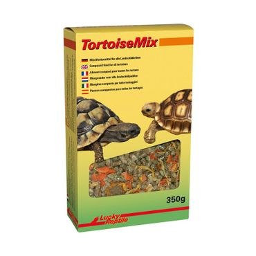 Lucky Reptile Tortoise Mix