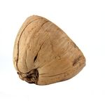Dragon coconut half shell with outer skin