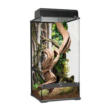 Exo Terra Large Terrarium (Glass Terrarium)