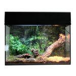 Lucky Reptile Starter Kit Vogelspinne/Skorpion