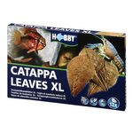 Hobby Catappa Leaves XL