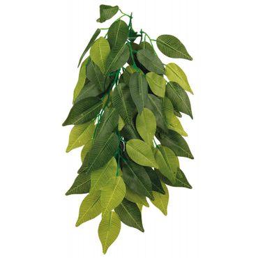 Trixie Seiden-Hängepflanze, Ficus